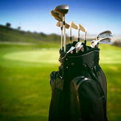 golf clubs - irons and woods